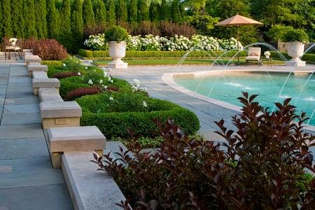 Mariani Landscape portfolio image 2