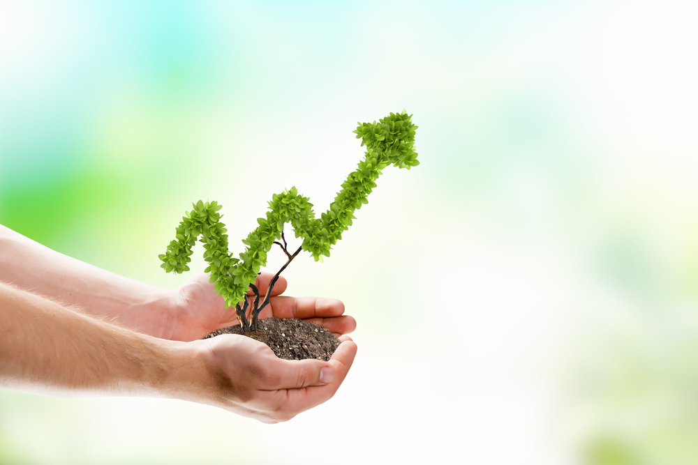 hands holding plant representing landscaping profit growth